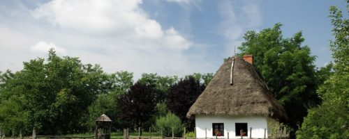 9143468 - typical village house in hungarian countryside